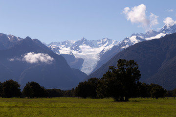 Foto op Plexiglas Bergen Farming and Harvest in New Zealand. Late afternoon. Fox Glacier New Zealand.