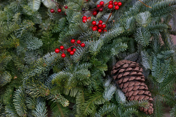 Christmas composition with cones and berry on pine tree