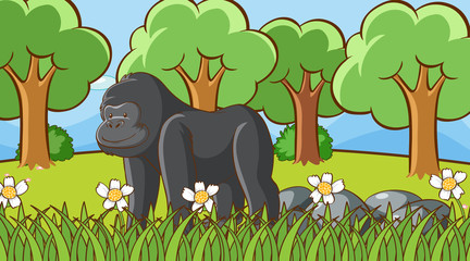 Scene with gorilla in the forest