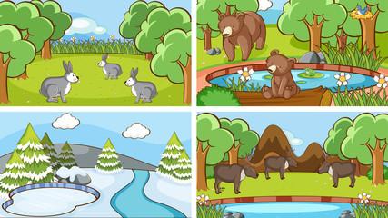 Photo sur Plexiglas Jeunes enfants Background scenes of animals in the wild