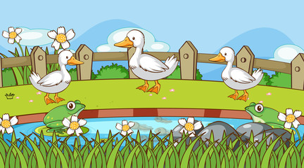 Photo sur Aluminium Jeunes enfants Scene with ducks and frogs by the pond