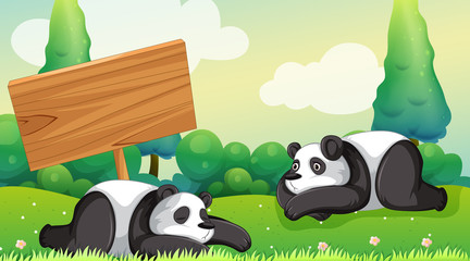 Poster Kids Scene with two pandas in the park