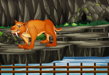 Scene with sabertooth in mountain