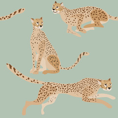 Two jaguars on a green-blue background seamless vector illustration. Picture with exotic african animals. Endless pattern.