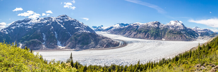 Panorama of Salmon Glacier and a chain of snow covered mountain peaks, Alaska