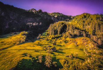Canvas Prints Honey landscape in mountains.tirol