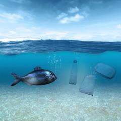 Fisch und Plastikmüll