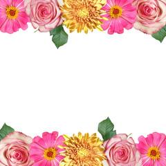 Fototapete - Beautiful floral background of tsiniya, chrysanthemum and rose. Isolated