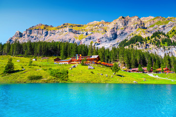 Wall Mural - Admirable alpine lake with forest and high mountains, Oeschinensee, Switzerland