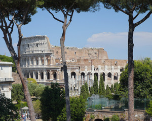 View of Colosseum from the Roman Forum with trees framing it