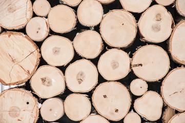 Poster de jardin Texture de bois de chauffage texture of wood log pile background