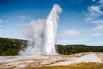 Old Faithful Geyser  and the landscape nature in Yellowstone national park in Wyoming , United States of America