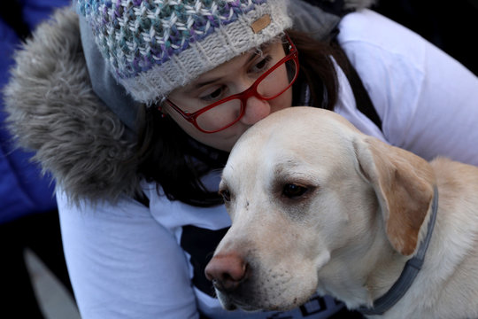 """A dog waits for the start of the """"Sanperrestre"""" walk to raise awareness about the need to adopt dogs and cats instead of purchasing them, in Madrid"""