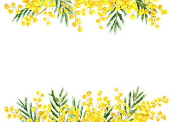 Mimosa yellow spring  flower border and frame. Watercolor hand drawn illustration isolated on white background