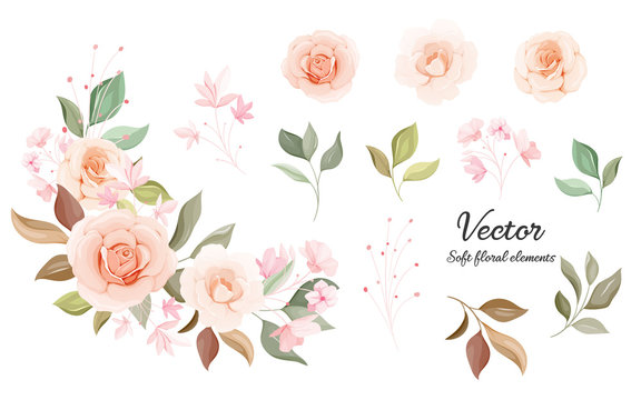Flowers vector collection. Soft color floral decoration illustration of peach and white rose flowers, leaves, branches. Romantic botanic elements for wedding, greeting, valentine card design
