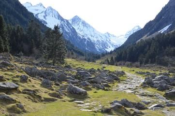 Vallée de Lutour, Cauterets, Pyrénées, France