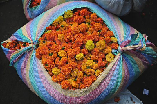 Flowers bursting from a striped tarpaulin in an Indian street market
