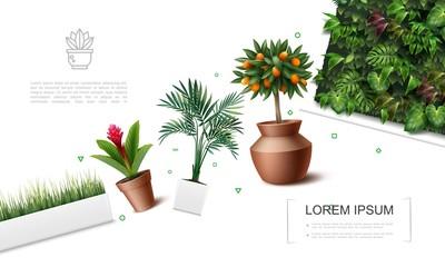 Wall Mural - Realistic Beautiful Plants Template