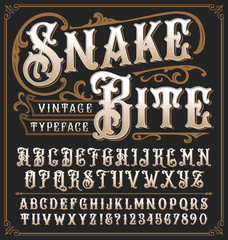 Snake Bite a vintage decorative typeface with ornate frame