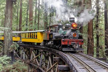 Steam train crossing an old trestle through redwood forest. Felton, Santa Cruz County, California, USA.