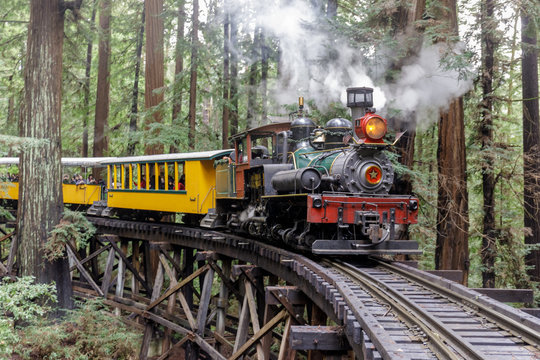Steam train crossing an old trestle through redwood forest. Felton, Santa Cruz County, California, USA.