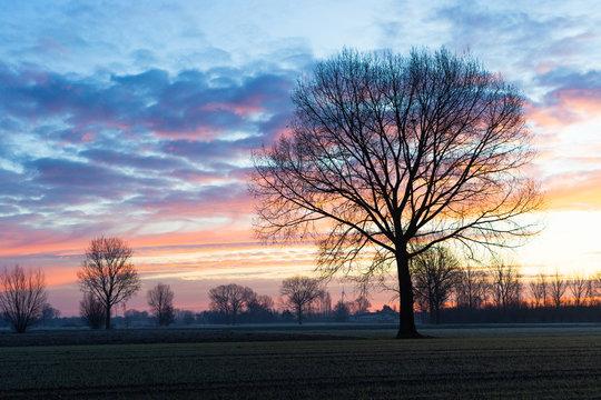 colourfull sky at sunrise in winter
