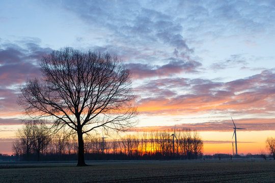 sunrise in winter with colourfull sky and windmill