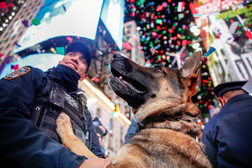 A New York Police Department (NYPD) dog named K9 Louie looks on as revelers celebrate the New Year in New York