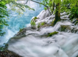 In de dag Bos rivier Long exposure of the top of a waterfall, with water rushing past trees and plants to the edge of the falls. Plitvice Lakes National Park, Croatia.