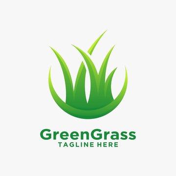 Green grass logo design inspiration