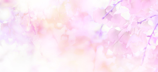 Foto auf Leinwand Blumen Abstract floral backdrop of purple flowers with soft style.