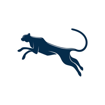 Wild black panther isolated puma or cougar. Vector running or jumping leopard silhouette