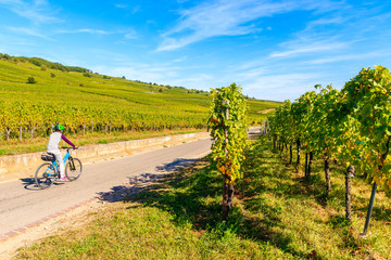 Papiers peints Vignoble Young woman cycling on road along vineyards to Kaysersberg village, Alsace Wine Route, France