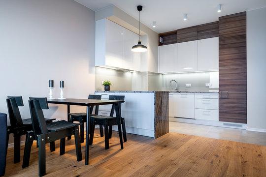 Modern living room and kitchen interior design