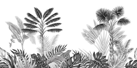 Tropical vintage botanical landscape, palm tree, banana tree, plant floral black and white seamless border white background. Exotic jungle wallpaper.