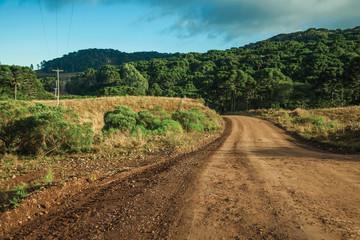 Deserted dirt road passing through rural lowlands