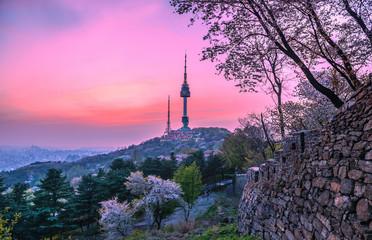 Fotobehang Seoel Twilight Seoul Tower in Spring at south korea