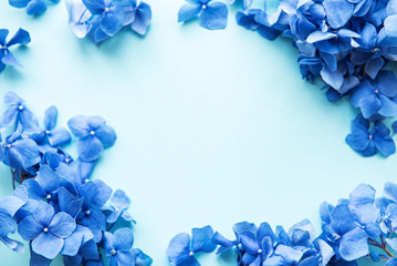 Keuken foto achterwand Hydrangea Blue hydrangea flowers