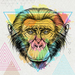 Hipster animal monkey on artistic polygon watercolor background