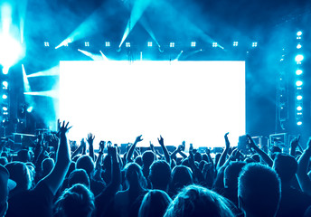 cheering people at rock concert Fotomurales