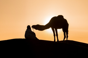 Bedouin and camel on way through sandy desert Beautiful sunset with caravan on Sahara, Morocco Desert with camel and nomads Silhouette nomad man with dramatic sky Picturesque background nature concept