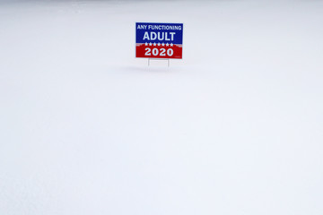 "A campaign sign reading ""Any Functioning Adult 2020"" stands in a snow-covered yard in Concord"