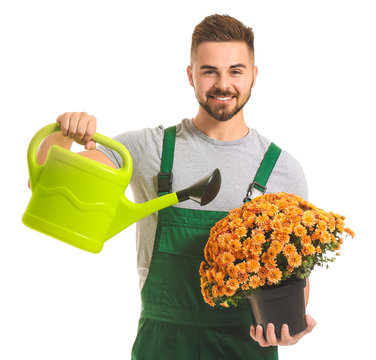 Handsome male gardener with watering can and plant on white background