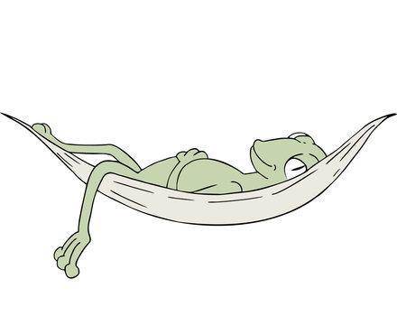 frog sleeping in hammock