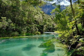 Tarawera River, Bay of Plenty, North Island New Zealand