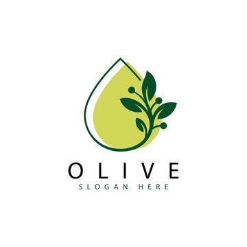 fresh olive logo, water leaf logo, green olive logo