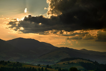 Printed roller blinds Buddha Golden sunset in carpathian mountains - beautiful summer landscape, spruces on hills, dark cloudy sky and bright sun light, meadow and wildflowers