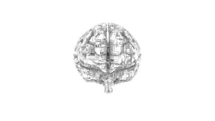 Biomechanical computer brain - monochrome  machine mind 3D render - front view