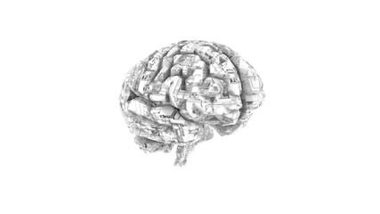 Biomechanical computer brain - monochrome  machine mind 3D render - angle view