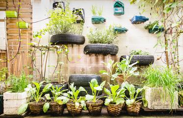 garden in urban Fotobehang